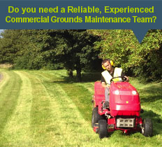 commercial grounds maintenance in chelmsford