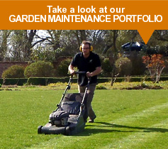 Take a look at our Garden Maintenance Portfolio