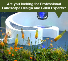 landscape design in chelmsford